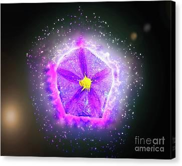 Digitally Manipulated Purple Garden Flower  Canvas Print