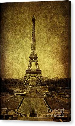 Dignified Stature Canvas Print by Andrew Paranavitana