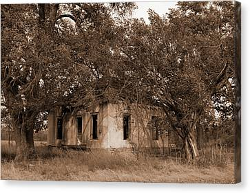 Dilapidated House Canvas Print by Mark A Brown