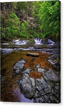 Northeastern Canvas Print - Dingmans Creek by Rick Berk
