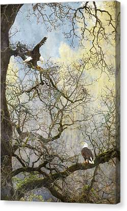Canvas Print featuring the photograph Dining In The Canopy by Angie Vogel
