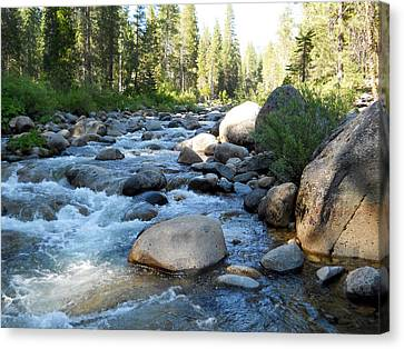 Dinkey Creek 10 Canvas Print