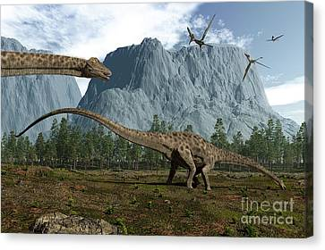Diplodocus Dinosaurs Graze While Canvas Print by Walter Myers