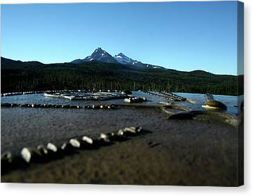 Canvas Print featuring the photograph Directional Points by Laddie Halupa