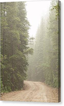 Canvas Print featuring the photograph Dirt Road Challenge Into The Mist by James BO Insogna