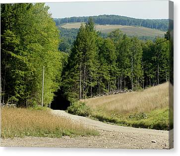 Dirt Road Through The Mountains Canvas Print by Jeanette Oberholtzer