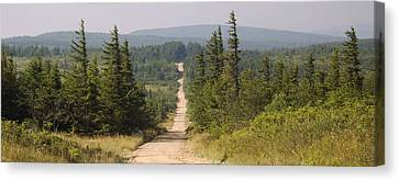 Dirt Road To Dolly Sods Canvas Print
