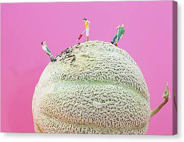 Canvas Print featuring the painting Dirty Cleaning On Sweet Melon II Little People On Food by Paul Ge