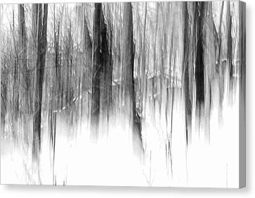 Canvas Print featuring the photograph Disappearance by Steven Huszar