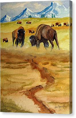 Bison Heard Canvas Print - Dispute by Joe Prater