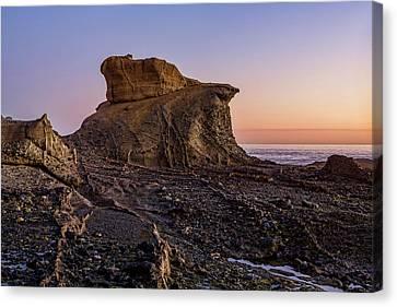 Distinctive Rock Aliso Beach Canvas Print by Kelley King