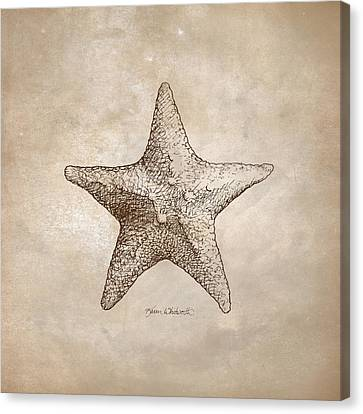 Canvas Print featuring the drawing Distressed Antique Nautical Starfish by Karen Whitworth