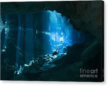 Diver Enters The Cavern System N Canvas Print by Karen Doody