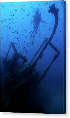 Diver Exploring The Dalton Shipwreck With A School Of Fish Swimming Canvas Print by Sami Sarkis