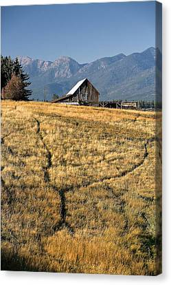 Divergence Canvas Print by Lawrence Boothby