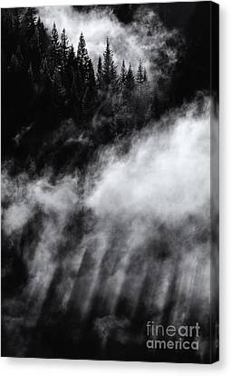 Divine Light Canvas Print