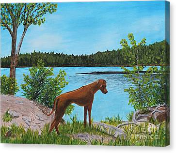 Dixie At The Lake - Rhodesian Ridgeback Canvas Print by Barbara Griffin