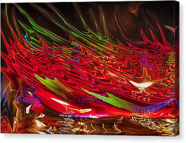 Canvas Print featuring the photograph Dizzy by Linda Constant