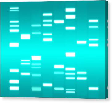 Chromosome Canvas Print - Dna Cyan by Michael Tompsett