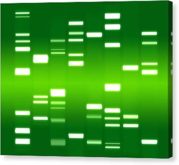 Chromosome Canvas Print - Dna Green by Michael Tompsett