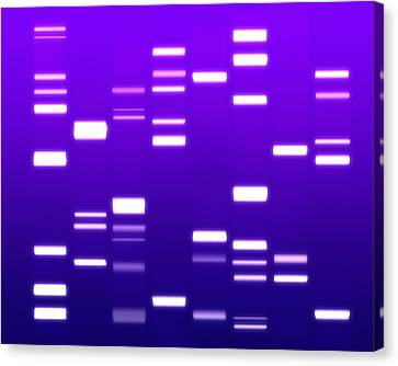 Chromosome Canvas Print - Dna Purple by Michael Tompsett