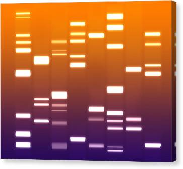 Dna Purple Orange Canvas Print by Michael Tompsett
