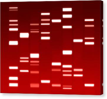 Chromosome Canvas Print - Dna Red by Michael Tompsett