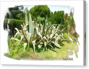 Canvas Print featuring the photograph Do-00335 Plant Bois Des Pins by Digital Oil