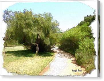 Canvas Print featuring the photograph Do-00336 -pathway Bois Des Pins by Digital Oil