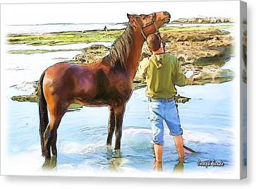 Do-00421 Washing Horse In Mina Canvas Print