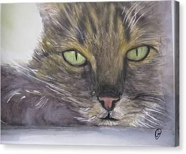 Do Not Disturb Canvas Print by Annie Poitras