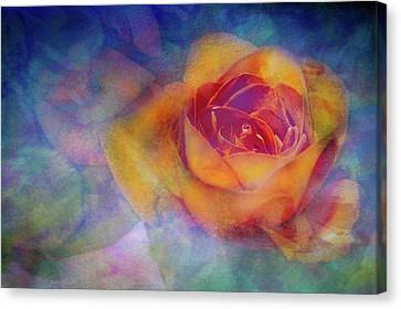 Do Not Watch The Petals Fall Canvas Print by Ches Black