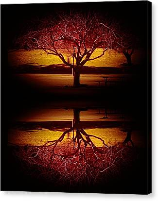 Do You See What I See? Canvas Print by Rich Mann