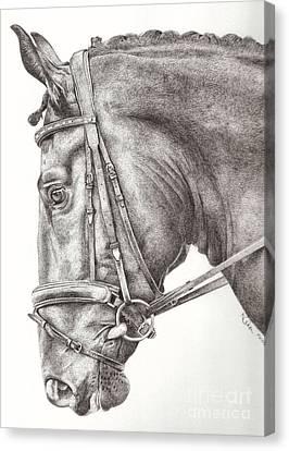 Dobbin Canvas Print by Karen  Townsend