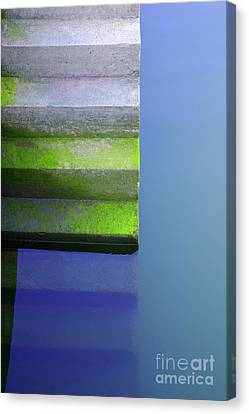 Dock Stairs Canvas Print by Carlos Caetano
