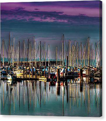 Docked Sailboats Canvas Print by David Patterson