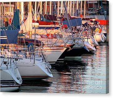 Navigation Canvas Print - Docked Yatchs by Carlos Caetano