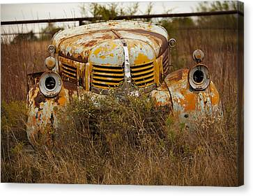 Dodgin' Work Canvas Print by Toni Hopper