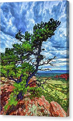 Doe Mountain Pinyon Canvas Print by ABeautifulSky Photography