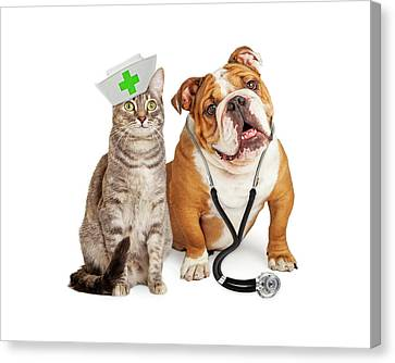 Dog And Cat Veterinarian And Nurse Canvas Print