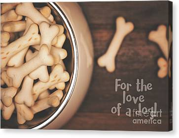 Dog Biscuits In A Bowl, Top View. Canvas Print by Jane Rix