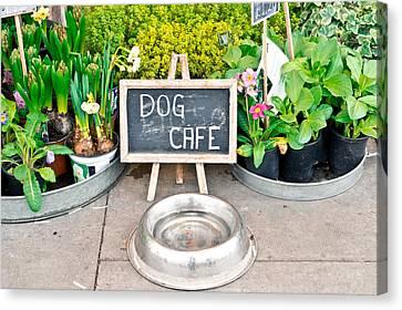Dog Cafe Canvas Print