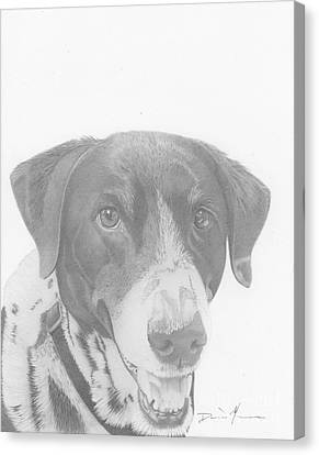 Dog Drawing Orion Canvas Print