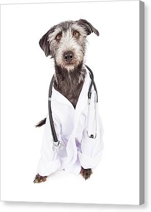 Dog Dressed As Veterinarian Canvas Print by Susan Schmitz