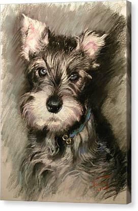 Dog In Blue Collar Canvas Print by Ylli Haruni
