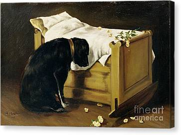 Dog Mourning Its Little Master Canvas Print by A Archer