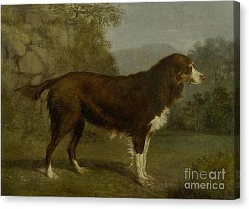 Dog Portrait In A Landscape Canvas Print by MotionAge Designs