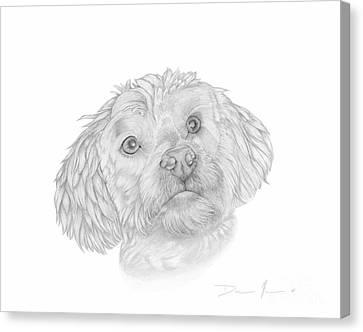 Dog Portrait Marsh Mellow Canvas Print