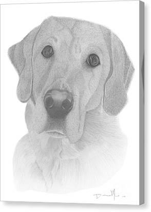 Dog Portrait Webster Canvas Print