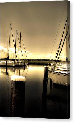 Dog River Marina Canvas Print